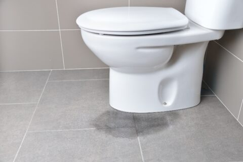 Water Leaking from Toilet Base
